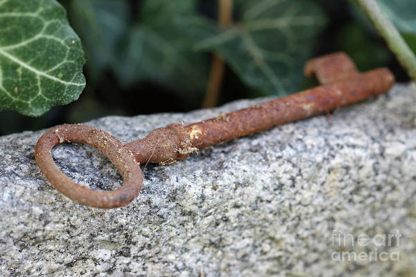 Old Wall Art - Photograph - Lost Old Rusty Key Lying On The Stone by Michal Boubin