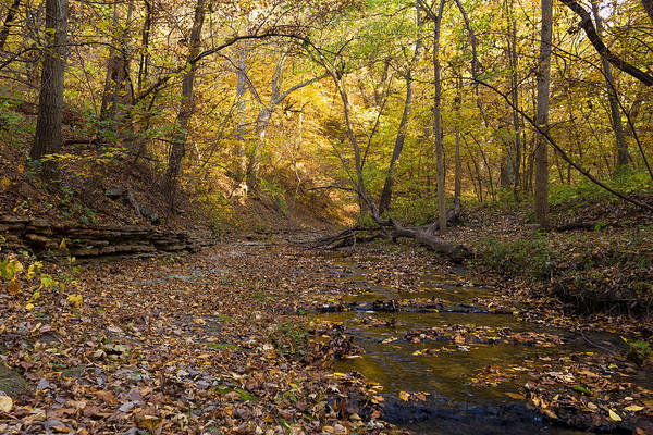 Lost River State Park Wall Art - Photograph - Lost Paths by Joseph Mills