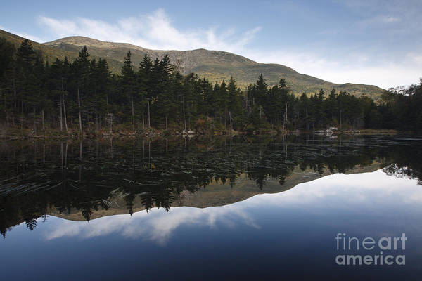 Photograph - Lost Pond - White Mountains New Hampshire Usa by Erin Paul Donovan