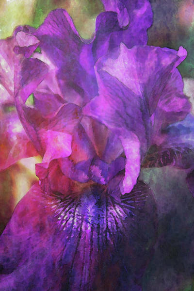 Photograph - Lost Purple Iris Digital Painting 6147 Ldp_2 by Steven Ward