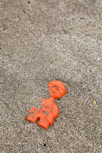 Photograph - Lost Toy by Maria Heyens