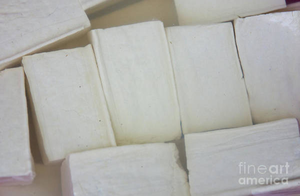 Quang Nam Province Photograph - Lots Of Tofu by Lisa Top