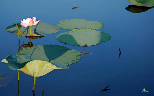 Photograph - Lotus 1 by Sam Davis Johnson