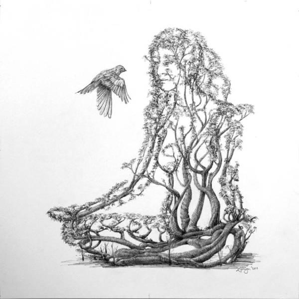 Wall Art - Drawing - Lotus Dancer by Mark Johnson