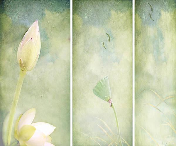 Wall Art - Digital Art - Lotus Garden by Margaret Hormann Bfa