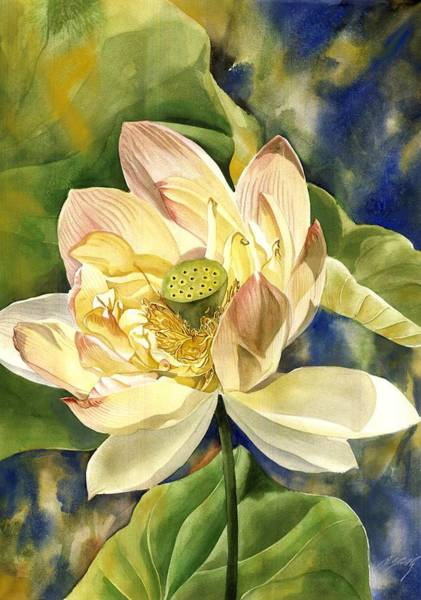 Painting - Lotus In Blooms by Alfred Ng