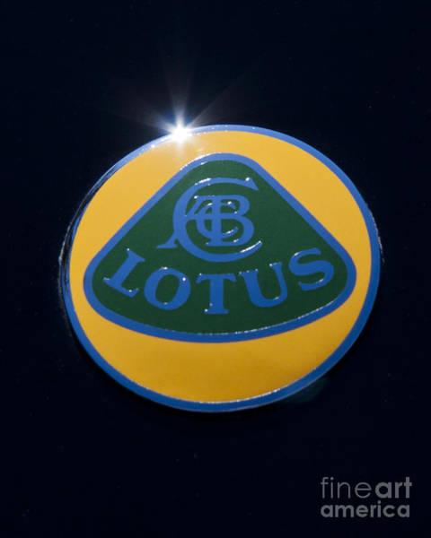 Photograph - Lotus by John Zawacki