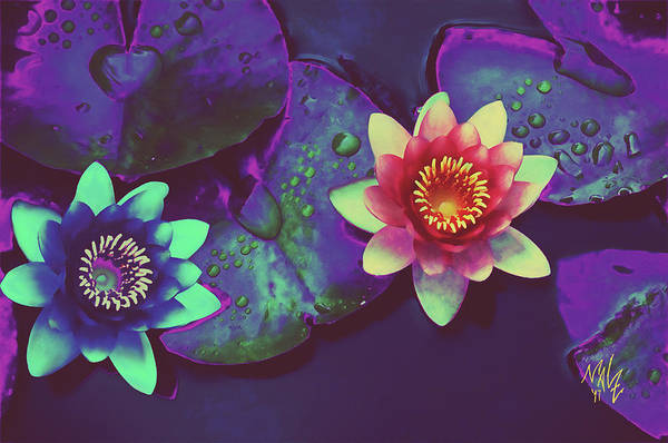 Digital Art - Lotus by Mal-Z