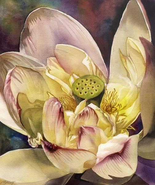 Painting - Lotus Watercolor by Alfred Ng