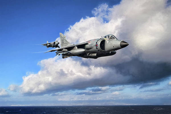 Wall Art - Digital Art - Loud And Proud Sea Harriers by Peter Chilelli