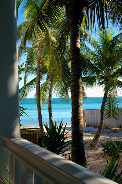 Key West Photograph - Louie's Backyard by Susanne Van Hulst