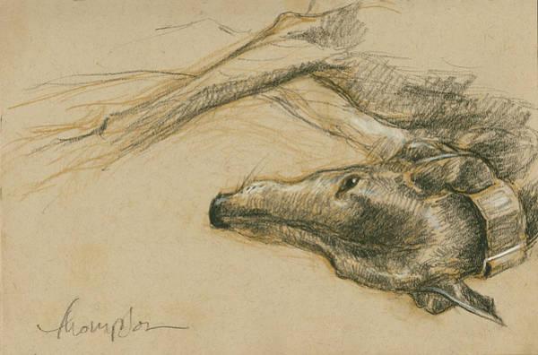 Lounging Greyhound Art Print
