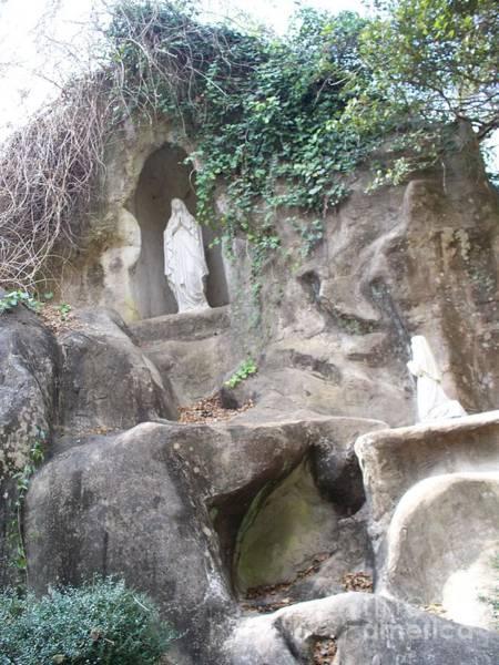 Soubirous Photograph - Lourdes' Grotto At Grand Coteau by Seaux-N-Seau Soileau