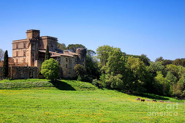 Wall Art - Photograph - Lourmarin Castle by Olivier Le Queinec