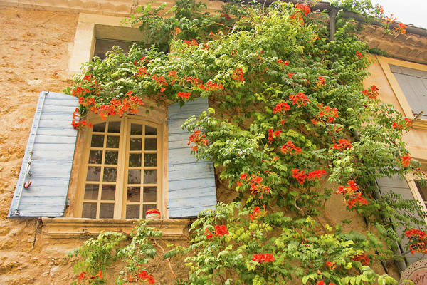 Lourmarin Photograph - Lourmarin, Shutters, Vines, Provence, France by Curt Rush