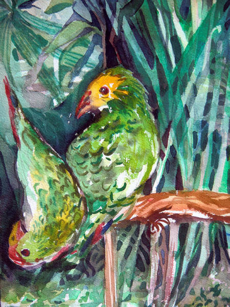 Green Parrot Drawing - Love Birds by Mindy Newman