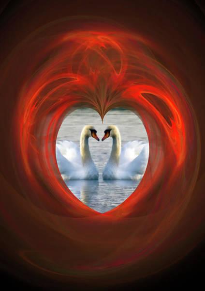 Photograph - Love by Brian Roscorla