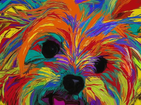 Yorkie Wall Art - Painting - Love In Color by Patti Siehien