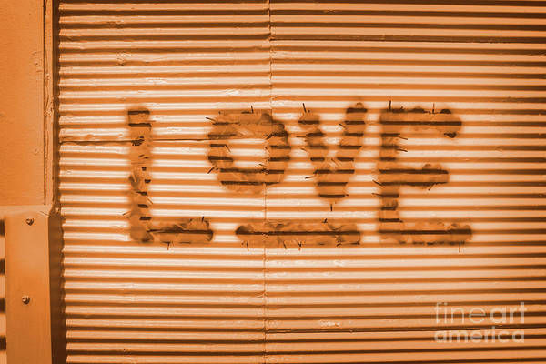 Gallery Wall Wall Art - Photograph - Love Is All by Jorgo Photography - Wall Art Gallery