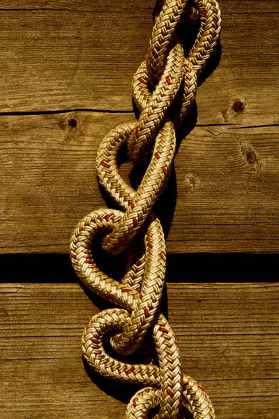 Photograph - Love Knots On The Dock by David Patterson