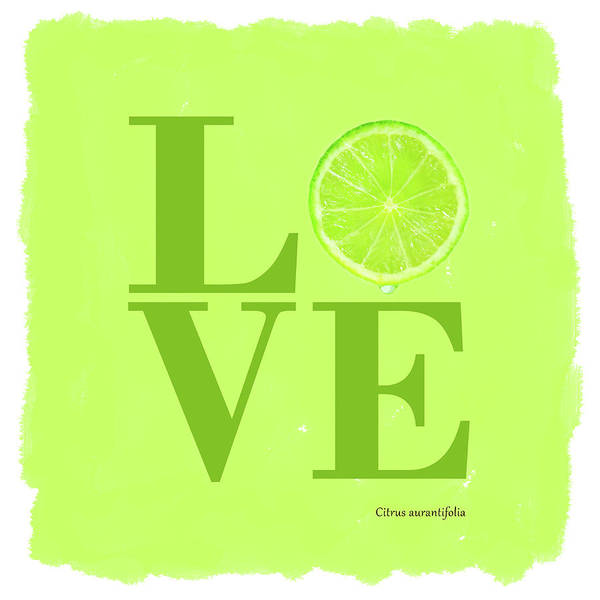 Wall Art - Photograph - Love Lime by Mark Rogan