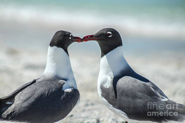 Jasmin Photograph - Love On The Beach by Jasmin Dominguez