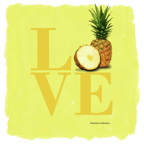Wall Art - Photograph - Love Pineapple by Mark Rogan