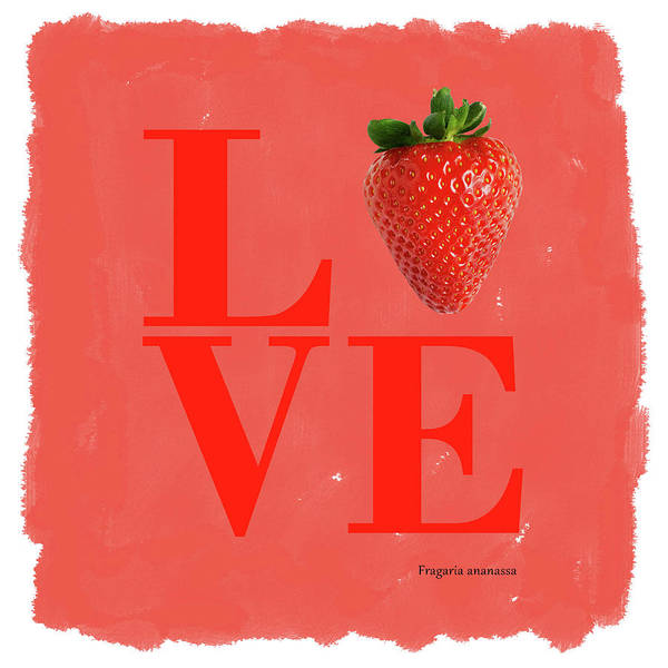 Wall Art - Photograph - Love Strawberry by Mark Rogan