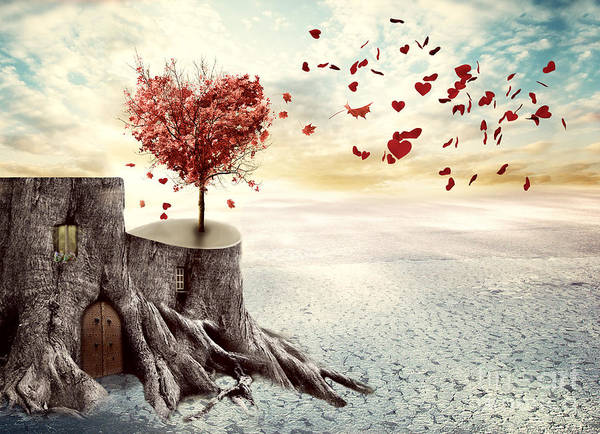 Photograph - Love Tree by Juli Scalzi