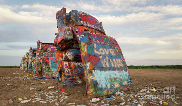 Litter Photograph - Love Wins by DiFigiano Photography