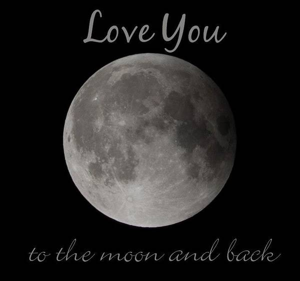 Photograph - Love You To The Moon And Back by Terry DeLuco