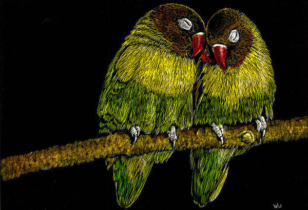 Drawing - Lovebirds by William Underwood