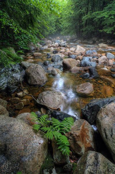 Digital Art - Lovell River 1 by Patrick Groleau