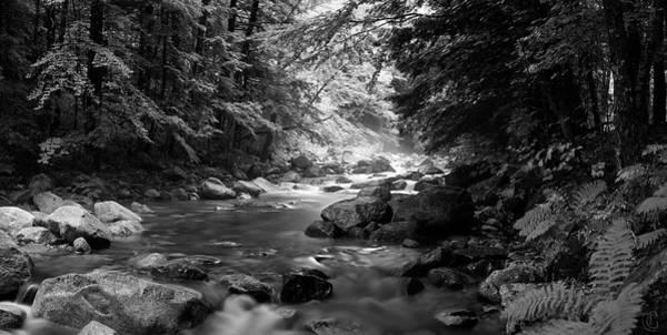 Digital Art - Lovell River 2 by Patrick Groleau