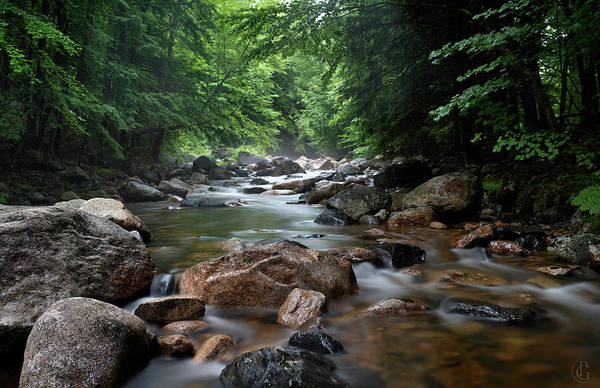 Digital Art - Lovell River 6 by Patrick Groleau