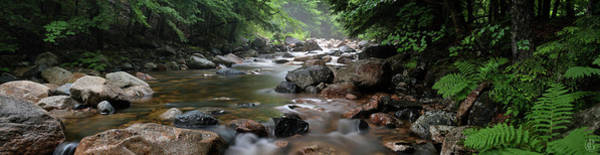 Digital Art - Lovell River 7 by Patrick Groleau