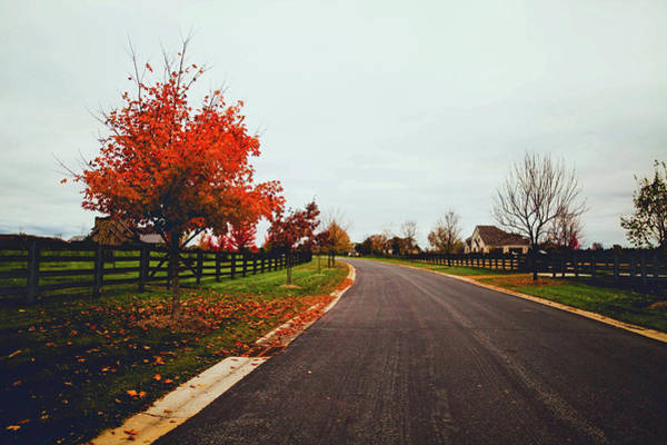 Subdivision Photograph - Lovely Autumn Drive by Aidan Meyer