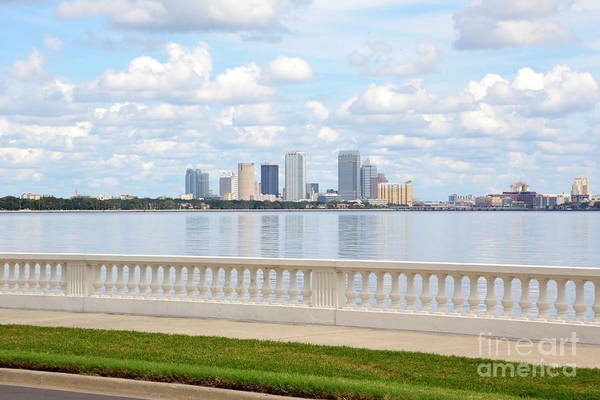 Photograph - Lovely Bayshore Boulevard by Carol Groenen