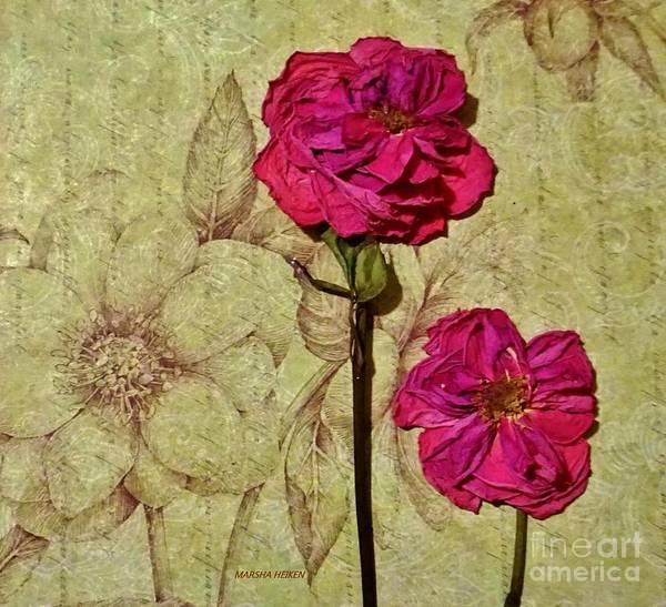 Wallpaper Mixed Media - Lovely Dried Roses by Marsha Heiken