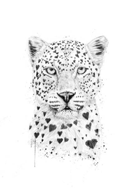 Funny Wall Art - Drawing - Lovely Leopard by Balazs Solti