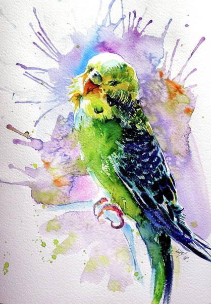 Wall Art - Painting - Lovely Parrot by Kovacs Anna Brigitta