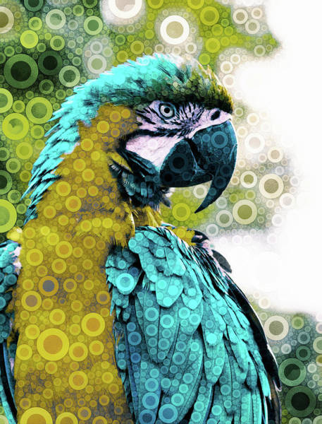 Mixed Media - Lovely Plumage by Susan Maxwell Schmidt