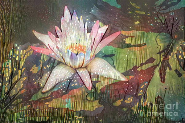 Lilly Pad Digital Art - Lovely Waterlilies 2 by Amy Cicconi