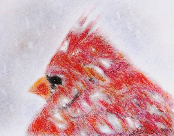 Red Cardinal Drawing - Loving Winter by Angela Davies