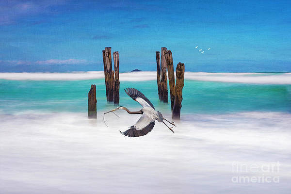 Grey Skies Wall Art - Photograph - Low Flying Heron by Laura D Young