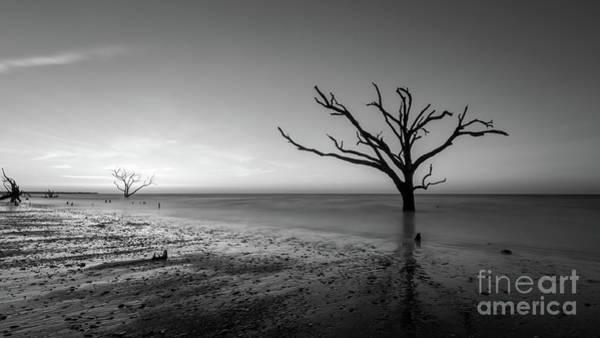 Wall Art - Photograph - Low Tide At Botany Bay Plantation Bw  by Michael Ver Sprill