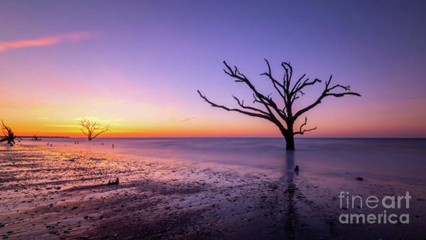 East Bay Photograph - Low Tide At Botany Bay Plantation  by Michael Ver Sprill