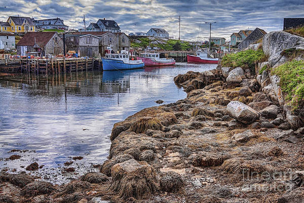 Photograph - Low Tide At Peggy's Cove  3 by Tatiana Travelways