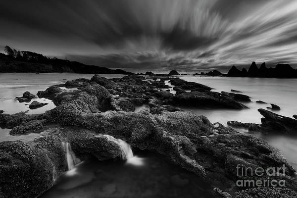 Low Tides Photograph - Low Tide At Seal Rock, Oregon by Masako Metz