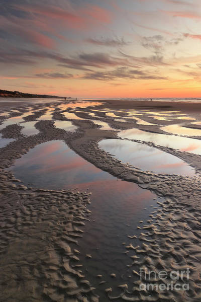 Low Tides Photograph - Low Tide At Sunset --vertical by Masako Metz